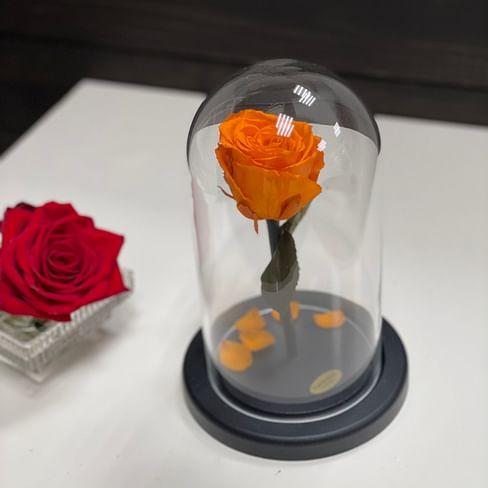 Роза в стеклянной колбе Mini