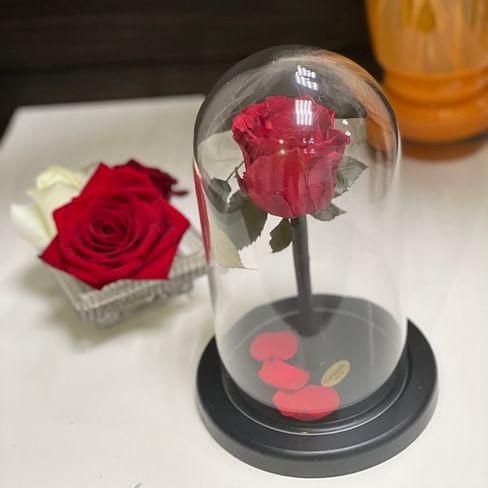 Роза в стеклянной колбе (красная) Mini