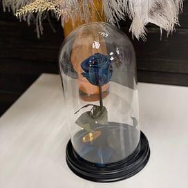 Роза в стеклянной колбе (синяя) Standart