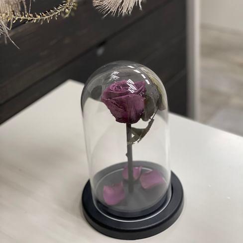 Роза в стеклянной колбе (фиолетовая) Mini