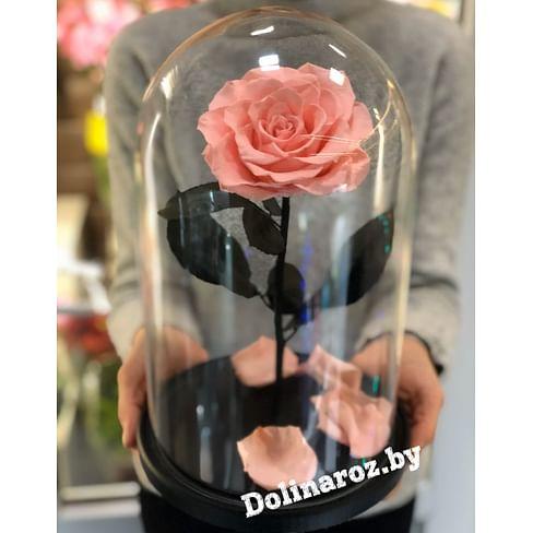 Роза в стеклянной колбе (розовая) VIP
