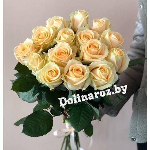 """Букет роз """"Крем"""" 15 роз"""