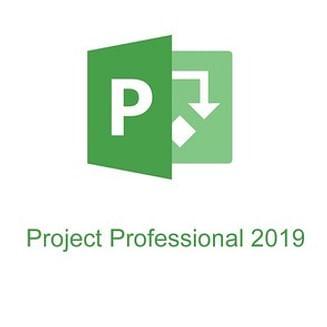 Microsoft Project Server 2019 Microsoft Corporation (лицензия ), ALNG OLVS NL Each Additional Product