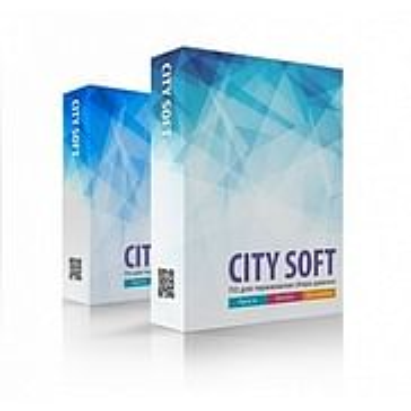 Scan City CitySoft Standard Scan City (лицензия для терминалов сбора данных для Windows), StdW