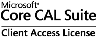 Microsoft Core CAL Microsoft Corporation (Buy-out fee), 1 user CAL - Open Value Subscription - Win - All Languages