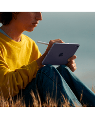 IPad mini Wi-Fi + Cellular 64GB - Space Grey Apple MK893RK/A