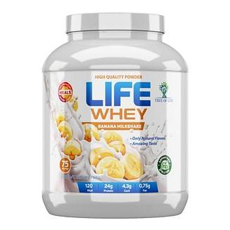 Протеин LIFE Whey Protein 2270 гр LIFE