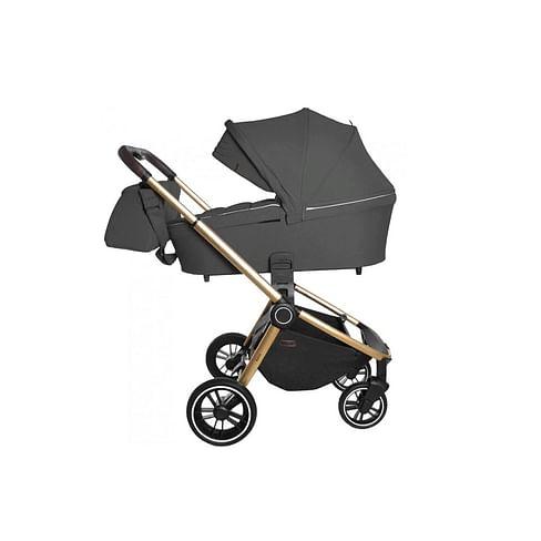 Детская коляска 2 в 1 CARRELLO Epica CRL-8510 (Iron Grey)