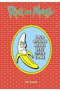 Рик и Морти. Блокнот. Банан Рик (А5, 72 л., контентный блок, со стикерами) Артикул: 93472 Эксмо