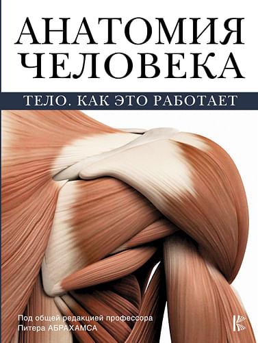 Анатомия человека Артикул: 6207 АСТ Абрахамс П.