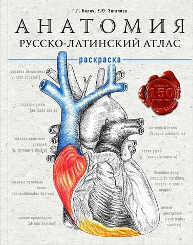 Анатомия: русско-латинский атлас-раскраска Артикул: 74497 Эксмо Билич Г.Л., Зигалова