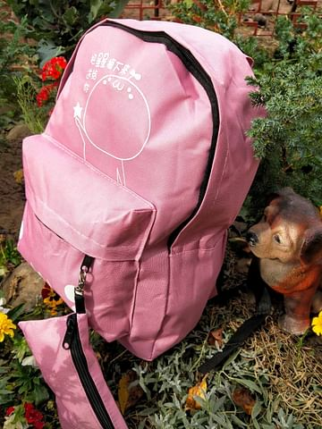 Рюкзак модель 252