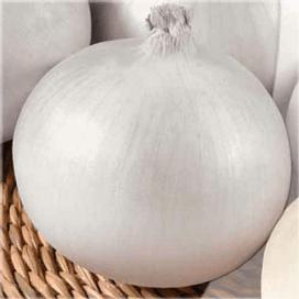 Сьерра Бланка F1 (Sierra Blanca F1) семена лука репчатого белого 250 000 семян Seminis/Семинис