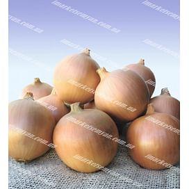 Сибирь семена лука репчатого озимого (Normal) 250 000 семян Bejo/Бейо