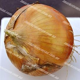 Альбатрос F1 семена лука озимого 250 000 семян LibraSeeds
