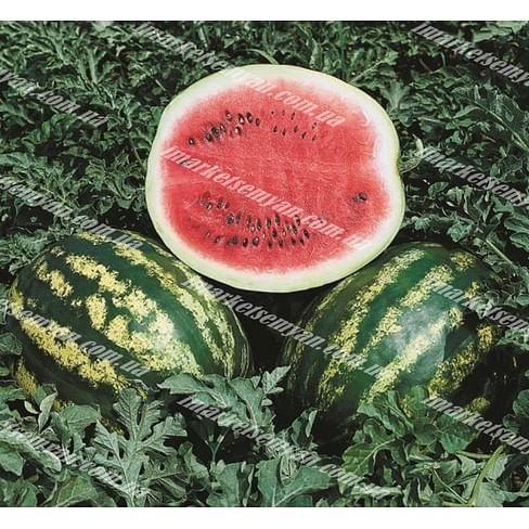 Кримсон Свит семена арбуза среднего 500 грамм United Genetics