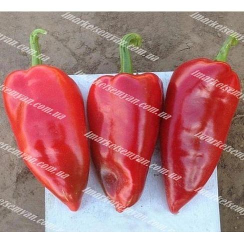 Капело F1 семена перца сладкого тип Венгерский раннего 500 семян Clause/Клоз