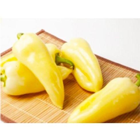 Призма F1 семена перца сладкого тип Венгерский среднего 500 семян NongWoo Bio