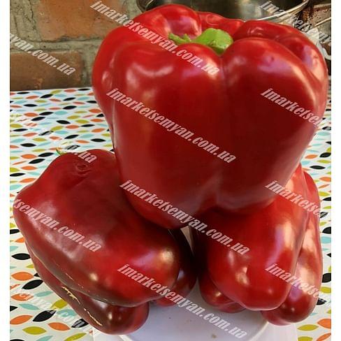 1601 F1 семена перца сладкого 500 семян Lark Seeds/Ларк Сидс