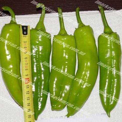 Сильви F1 семена перца сладкого раннего 500 семян Lark Seeds/Ларк Сидс
