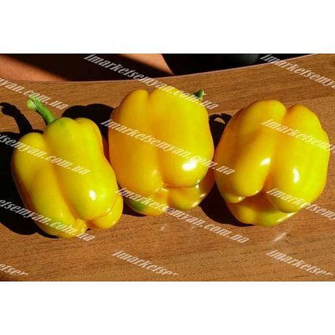 Виват F1 новинка семена перца сладкого 500 семян Lark Seeds/Ларк Сидс