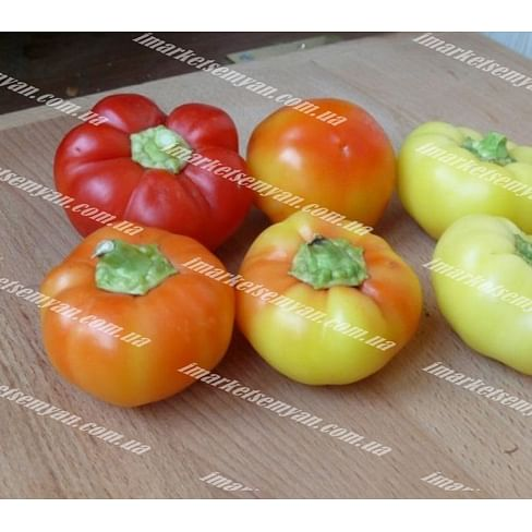 Мела Роса F1 новинка семена перца сладкого 500 семян Lark Seeds/Ларк Сидс