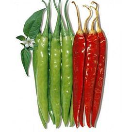 Ангарика F1 семена перца острого среднеспелого 10 семян NongWoo Bio