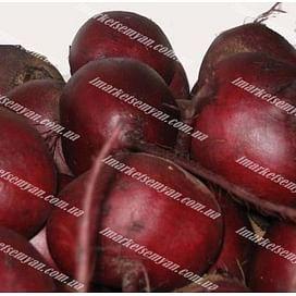 Шот Топ семена свеклы столовой округлого 1 кг Hazera