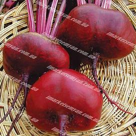 Египетский плоский семена свеклы столовой округлоприплюснутой Semenaoptom/Семенаоптом