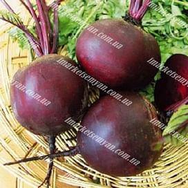 Бикорес семена свеклы столовой поздней Semenaoptom/Семенаоптом