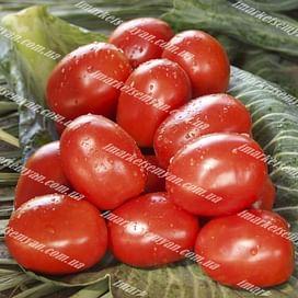 Омния F1 семена томата детермин. среднего (сливка) 1 000 семян NongWoo Bio