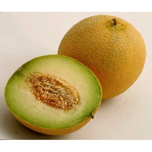 Воллер F1 семена дыни тип Галлия суперранней 1 000 семян Nunhems