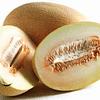 Соккар F1 семена дыни тип Ананас ранней 1 000 семян Nunhems