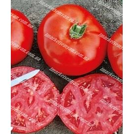 1504 F1 новинка семена томата дететерминантного Lark Seeds/Ларк Сидс