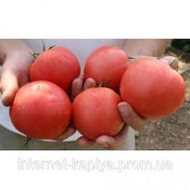 ТЕТМ 010 F1 семена томата розового 250 семян Taki Seed/Такии Сидс