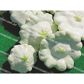 Сноудиск F1 семена патиссона белого Semo