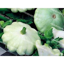 Патинова семена патиссона белого Semo