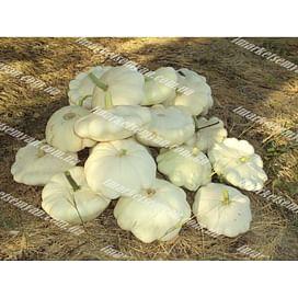 Деликатес семена патиссона белого Semo