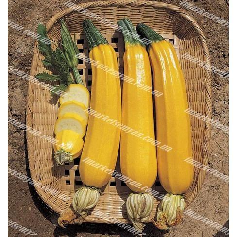 Елоу Хаус F1 семена цуккини раннего ярко-желтого NongWoo Bio
