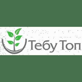 Тебу Топ 250 фунгицид к.э. 10 литров Терра-Вита/Terra Vita