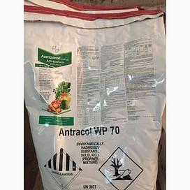 Антракол фунгицид с.п. 10 кг Bayer/Байер