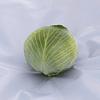 Киластор F1 семена капусты белокочанной поздней 2 500 семян Syngenta/Сингента
