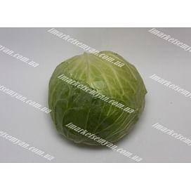 Грин Стар F1 семена капусты белокочанной (90-100 дней) LibraSeeds