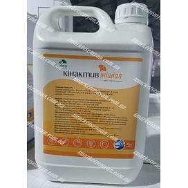Кинактив Инишиал биостимулятор р.к. 5 литров Саммит-Агро/SUMMIT-AGRO