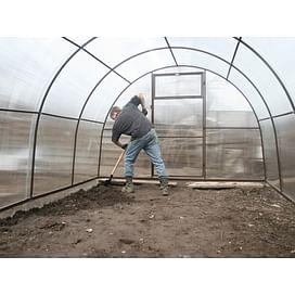 Выращивание томата в теплице от imarket Агро