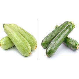 Технология выращивания кабачка