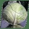 Аммон F1 (Ammon F1) семена капусты белокочанной 2 500 семян Seminis/Семинис