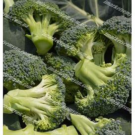 Стромболи F1 семена капусты брокколи ранней 2 500 семян Hazera