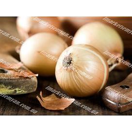 Халцедон семена лука репчатого среднего Semenaoptom/Семенаоптом