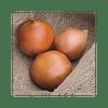 Замбези F1 (Zambezi F1) семена лука репчатого 250 000 семян Seminis/Семинис